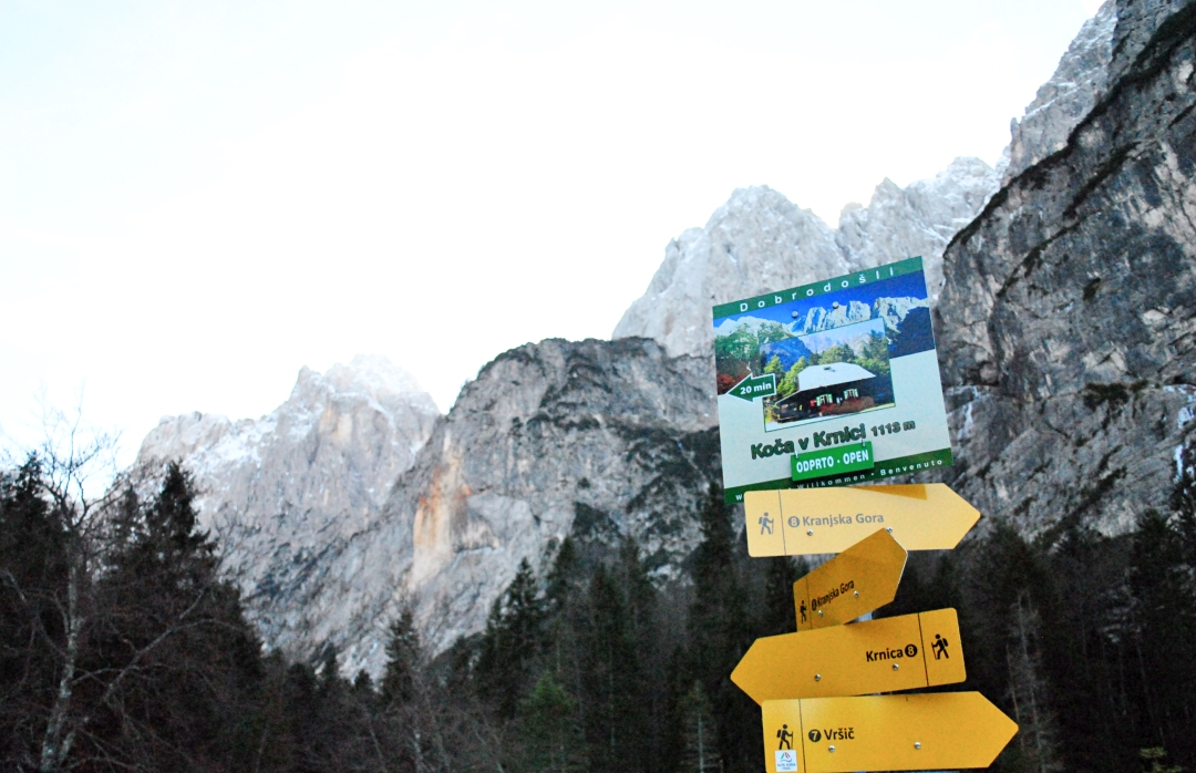 krnica-trail-pic